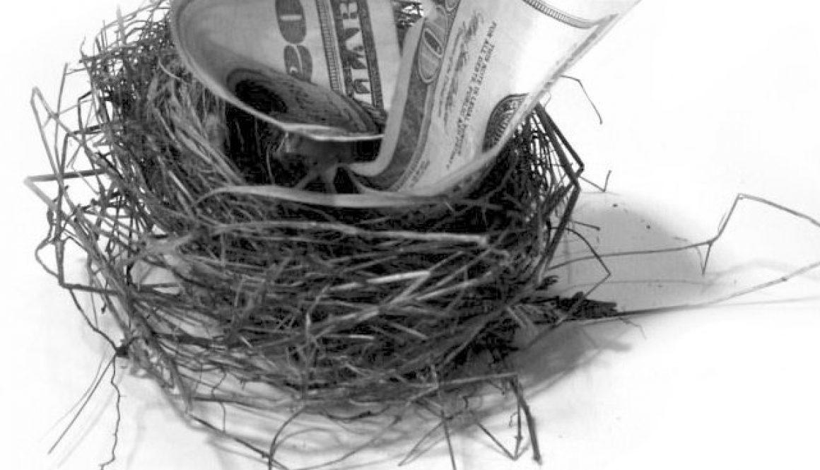 nest egg ii 1241466 1